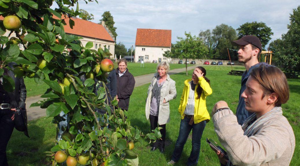 Eine Gruppe von Menschen alle Blick auf einen Apfelbaum in einem Garten von historischen Gebäuden umgeben. A group of people all look at an apple tree in a garden surrounded by historic buildings.
